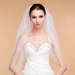 Simple Elegant Lace Appliques Wedding Veil