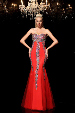Sheath/Column Tulle Floor Length Dresses for Christmas Dance