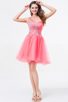 A-Line/Princess One-Shoulder Mini-Length Tulle Cocktail Dress with  Embroidery