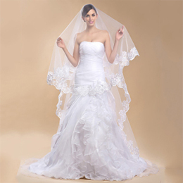 Tulle Sheer Wedding Bridal Veils Cathedral for Bride