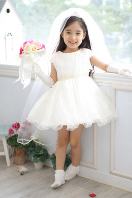 A-Line/Princess Tulle Short/Mini Princess Flower Girl Dress