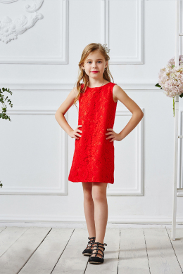 A-Line/Princess Lace Shoet/Mini Little Girl Dresses for Wedding