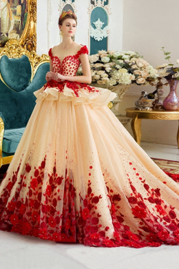 Ball Gown Tulle Cathedral Train Wedding Gown for Bride