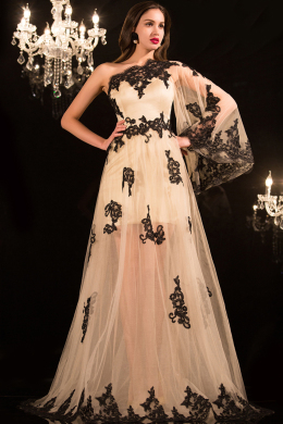A-Line/Princess One-Shoulder Floor Length Tulle Evening Dress with Appliques
