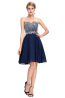 A-Line/Princess Chiffon Short/Mini Christmas Party Evening Dresses