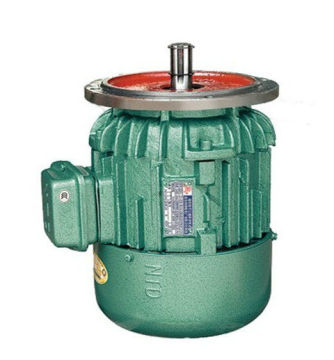 Standard Conical Rotor Three-phase Asynchronous Motor For Crane , Ip44