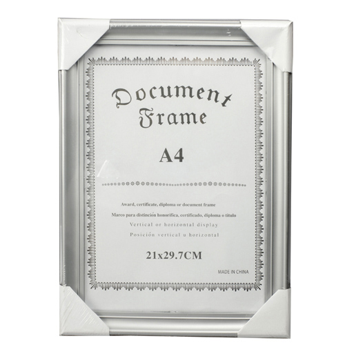 Document Frame