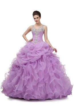 Ball Gown Organza Floor Length Princess Dresses for Teenagers