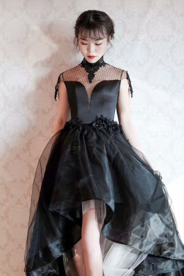 A-Line/Princess Organza Hi-Lo Little Black Dress Cocktail Party