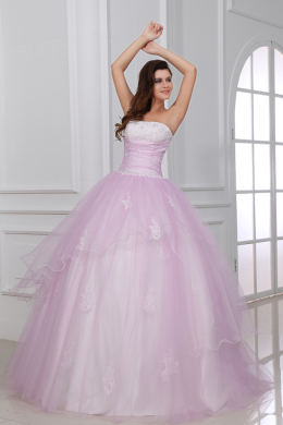 Ball Gown Strapless Floor Length Organza Prom Dress with Appliques