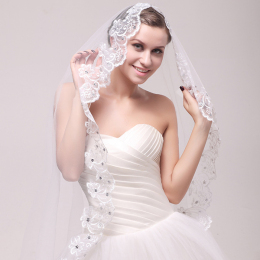 Simple Elegent Lace Appliques Wedding Veil