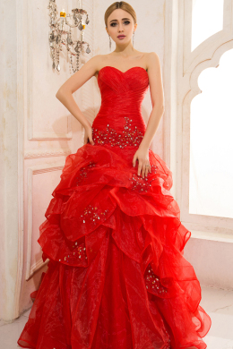 A-Line/Sheath Strapless Court Train Organza Prom Dresses With Applique