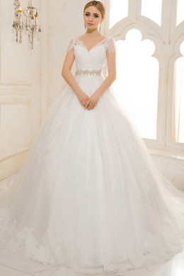 Ball Gown V-Neck Cathedral Train Organza Luxury Wedding Dress with Bow