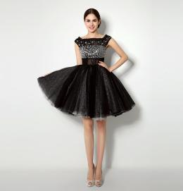 A-Line/Princess Tulle Short/Mini Cute Short Black Dresses