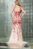 Trumpet/Mermaid Sweetheart Neckline Sweep Train Tulle Evening Dresses with Applique